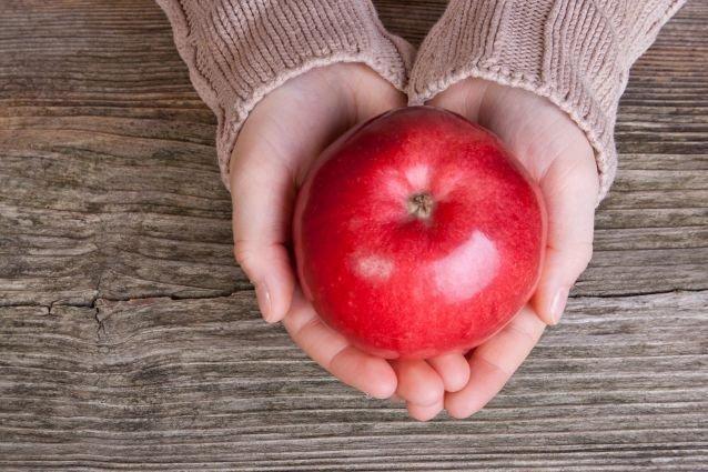 Comment Faire Pousser Des Fruits Activites Activites A L